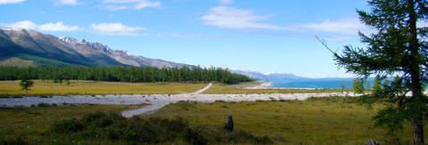 La rive ouest du lac Khuvsgul (Khovsgol)