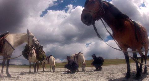 Arrêt avec la logistique en cheval de bât en Mongolie