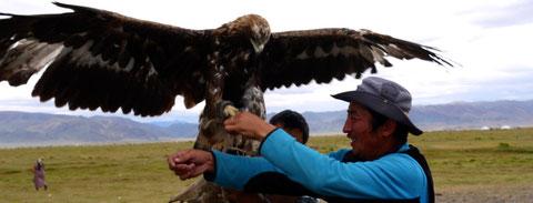"""Chez la famille d'éleveur Kazakh avec l'aigle qui va concourir au festival de """"Sagsai"""""""