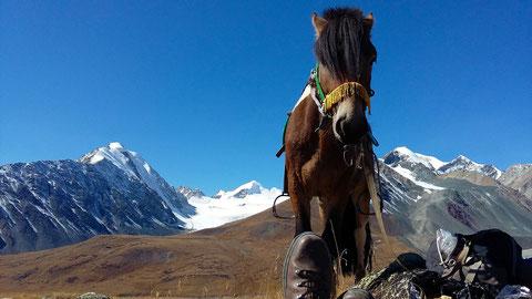 """En face le """"Tavan Bogd"""" les 5 plus haut sommet de Mongolie"""