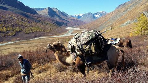 """Vallée glacière nord/sud qui mène au lacs du sud """"Tavan Bogd"""""""