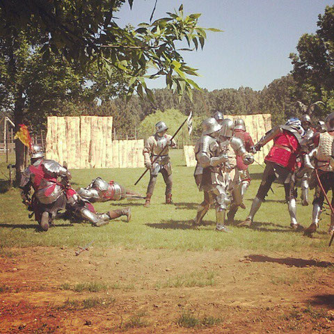 Battle of Diest