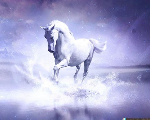 Jean voit le ciel s'ouvrir pour laisser apparaître un cheval blanc. La couleur blanche est associée à la sainteté et à la pureté. Le cheval incarne la guerre dans la Bible. L'apparition d'un cheval blanc annonce une guerre juste et sainte au nom de Dieu.