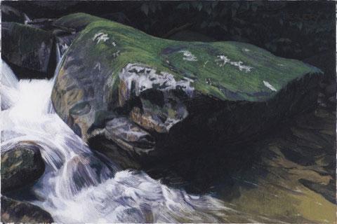 francois beaudry pastel et aquarelle peinture tableau pitbull série via appalachia 4