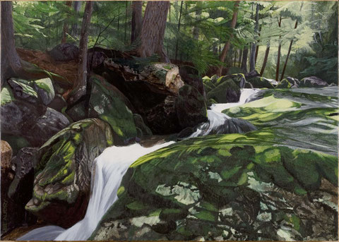francois beaudry egg tempera painting landscape cascade rocks moss via appalachia series 13