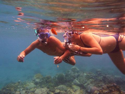 Petra interessiert sich immer mehr für die Welt unter Wasser