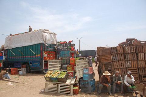 Das Einkaufen macht auf den uneuropäischen Märkten in Nordafrika natürlich besonders viel Spaß. Und es ist für uns  konkurenzlos günstig.....