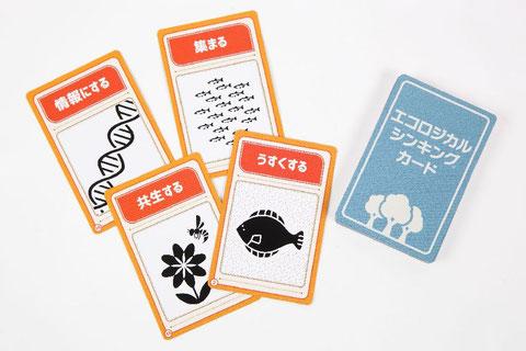 「エコロジカル・シンキング カード」カード画像