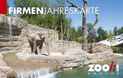 © Bild: rene.kim@zoo.ch