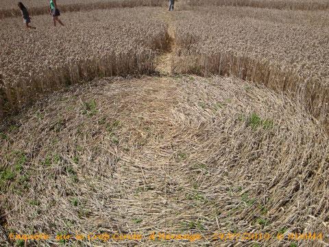 Enquête sur le Crop Circle d'Hérange