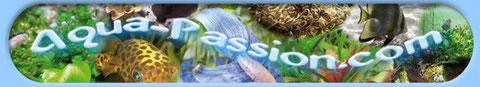Communauté aquariophile super sympa avec fiches, articles, forums... très accueillant !