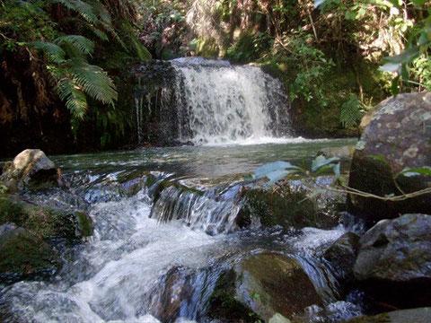 Misogi Falls