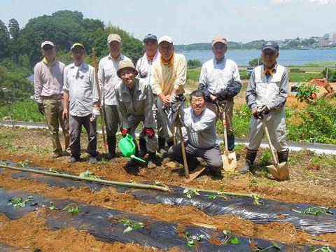 サツマイモ畑への苗の植え付けが完了し、記念撮影