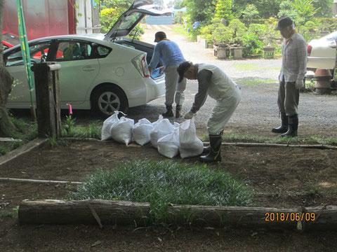 今日も土嚢を作り、土壌の流亡を防ぎます