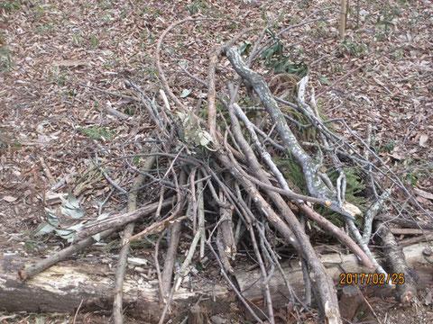 枯れ枝がすぐに山になります