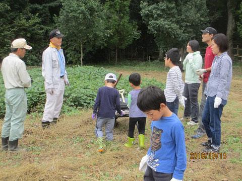 サツマイモの収穫体験に来た子供たちに掘り方の説明です