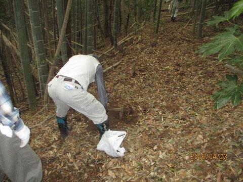 タケノコ掘りも結構大変です