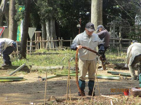 柵の固定に使う棕櫚縄を一定の長さに切っています
