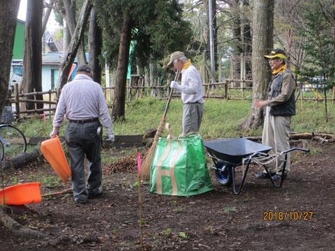 枯葉を集め、集積所に運びます