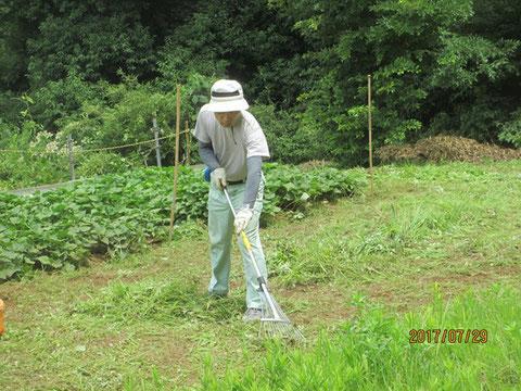 刈った草を集めるのも一苦労です