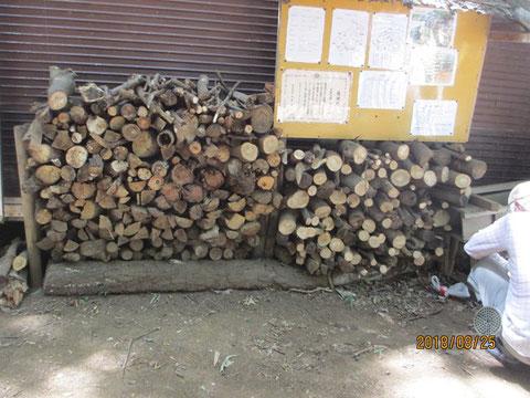 枝を切って、薪を作りました