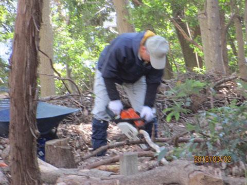 枝は持ち運びしやすいように切ります