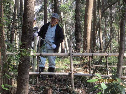 竹柵の改修作業は杭打ち作業から始まります