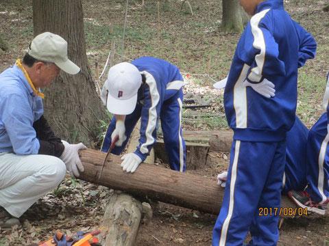 丸太を手鋸を使って切る作業