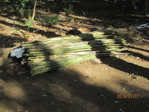 植物の標識に使う竹をいただいてきました
