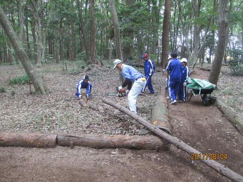 小さく切った松の丸太を片付ける作業