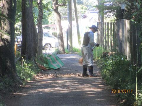 周辺道路の清掃作業