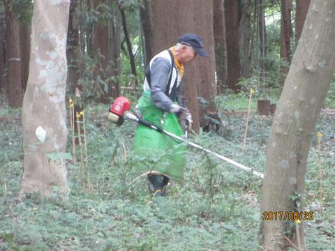 草刈り作業は続いています