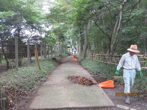 今日も活動地周辺の道路の清掃から開始です