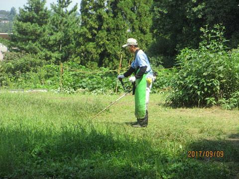 駐車場の草刈り作業