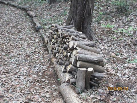切った枝を切り揃えました