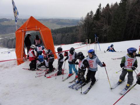 2013_Ski_Alpin Ostin