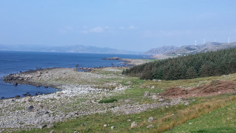 Küstenblick bei Lista