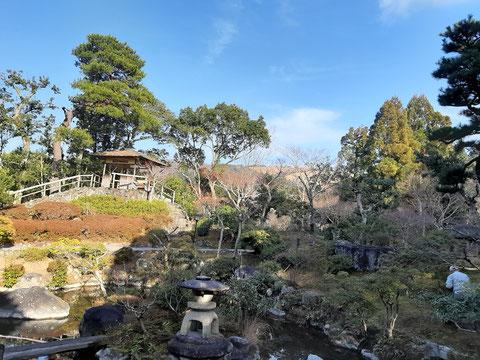 重厚な「旧正法院家住宅」の東側に池が広がる形の庭園 季節の花が楽しめます。京都観光タクシー永田信明