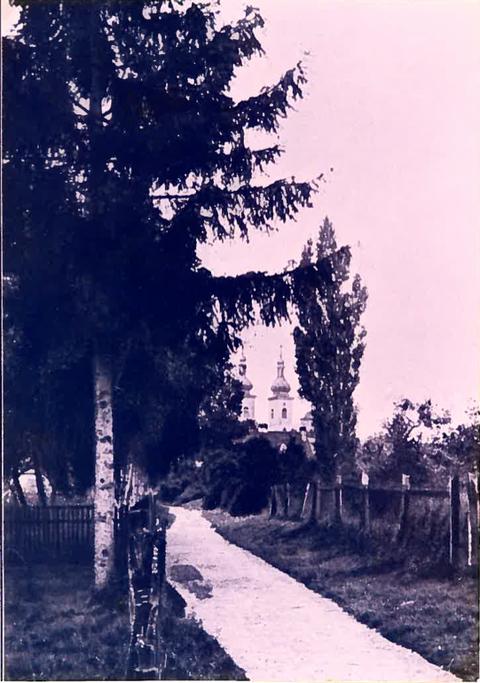 Blich in den Gartenweg von der Schlagpforte aus, 1910, links steht heute das Wohnhaus von Robert Rauch