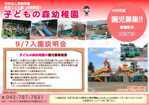 町田で幼稚園のポスティング