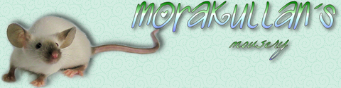 Gerodean's Mousery SWE