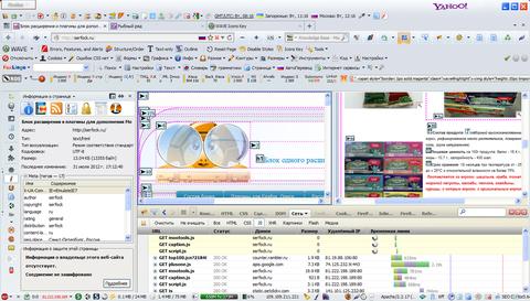 Вид Firefox с установленными расширениями
