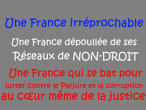 ÉLECTION PRÉSIDENTIELLE 2017 Patrick DEREUDRE Site www.maisonnonconforme.fr