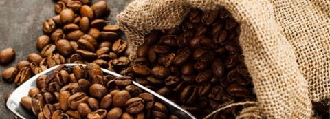 botanic comprar café de especialidad en grano o molido en Valencia. cafés de origen para cafetera superautomática como Etiopía, Colombia, Guatemala, Costa Rica, Kenia, Brasil, Perú, café natural tostado artesanal, 100% arábica, cafetera superautomatica