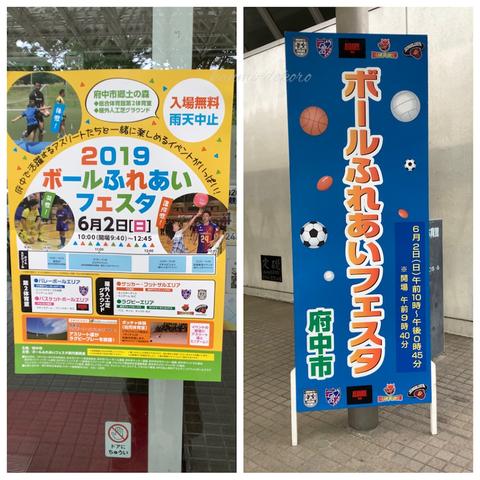 ボールふれあいフェスタ2019