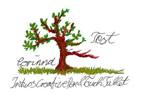 Damit ich mit Inkscape genauer zeichnen kann...