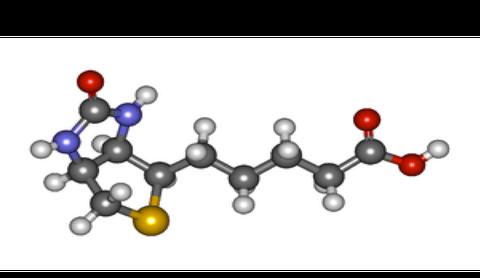modello molecola di biotina