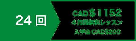 アカデミックエッセイライティングコースレッスン24回 CAD$1008   4時間無料レッスン   入学金CAD$200