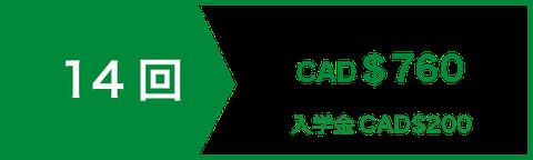 文法コース(中・上級)14回 | CAD$760 | 入学金CAD$200