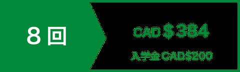 アカデミック 英文 ライティング 講座レッスン8回 CAD$336    入学金CAD$200